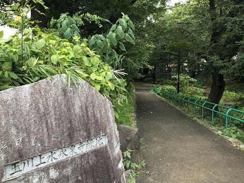 玉川上水 永泉寺緑化公園.jpg