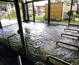天然温泉アロマ 内風呂.jpg