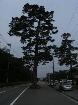 第44回 奥の細道を歩く 滑川~新湊(放生津)~高岡 2009年6月27~29日 023.jpg