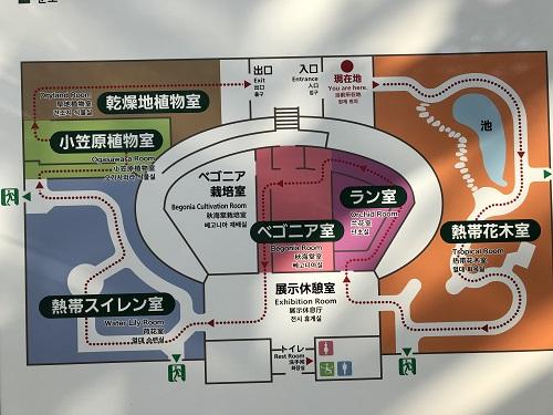 IMG_2134[1]神代植物園3..jpg