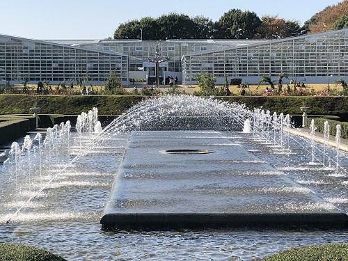 IMG_2160[1]神代植物園13.噴水から温室.jpg