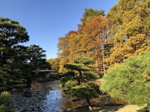 IMG_2182[1]神代植物園20.紅葉.jpg